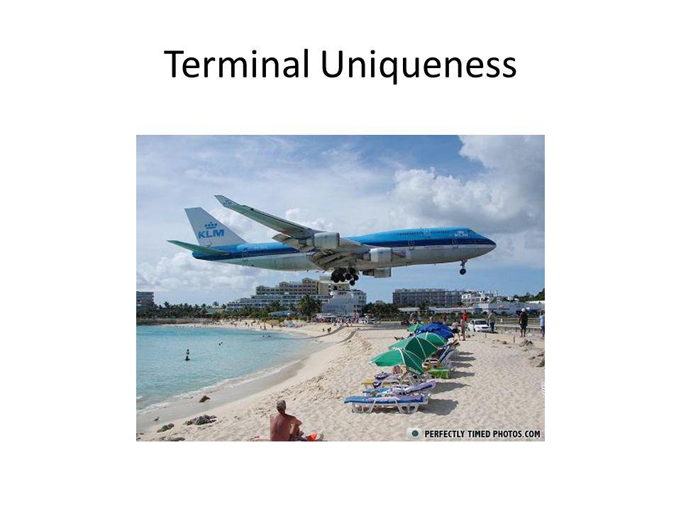 Terminal Uniqueness