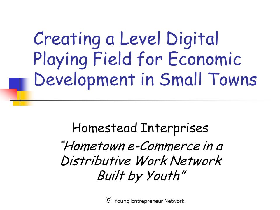 Young Entrepreneur Network Creating a Level Digital Playing Field for Economic Development in Small Towns Homestead Interprises Hometown e-Commerce in a Distributive Work Network Built by Youth ©