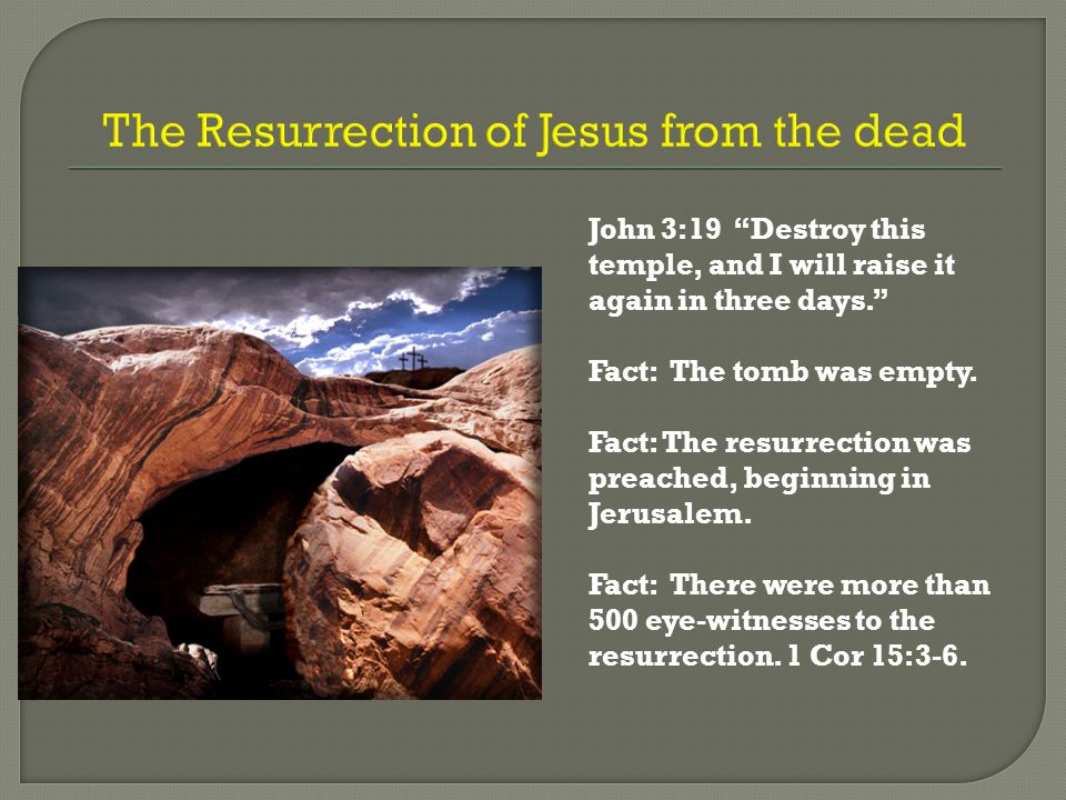 What is Your Response to the Claims of Jesus. John 11:45-54 Two reasonable responses to Jesus.