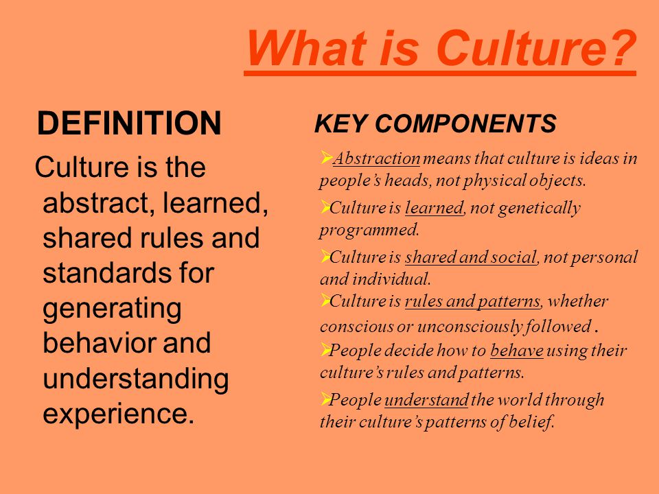 What is Culture? DEFINITION Culture is the abstract, learned, shared rules and standards for generating behavior and understanding experience. KEY COM