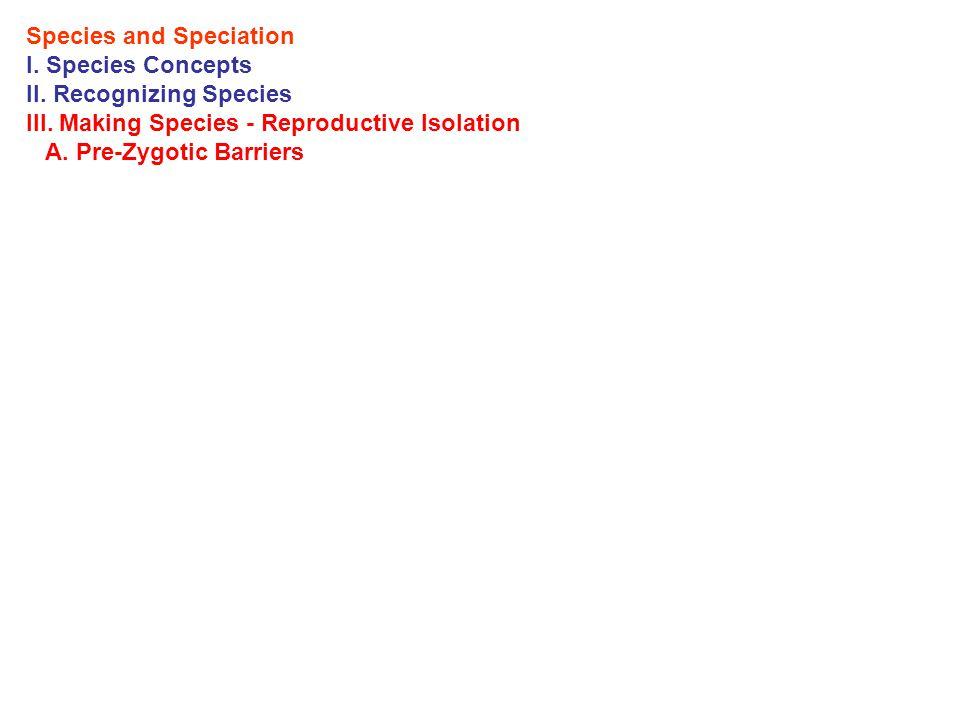 Species and Speciation I. Species Concepts II. Recognizing Species III.