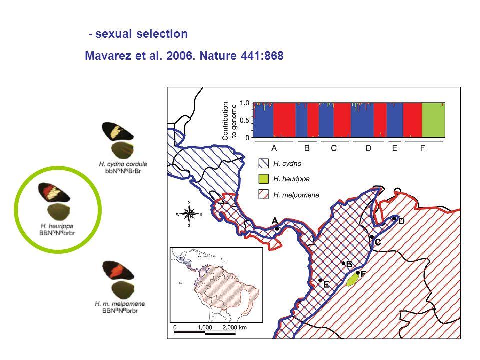 Mavarez et al. 2006. Nature 441:868