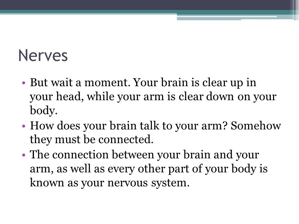 Nerves But wait a moment. Your brain is clear up in your head, while your arm is clear down on your body. How does your brain talk to your arm? Someho