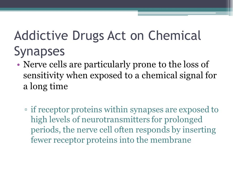 Addictive Drugs Act on Chemical Synapses Nerve cells are particularly prone to the loss of sensitivity when exposed to a chemical signal for a long ti