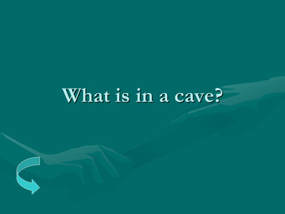 What is in a cave