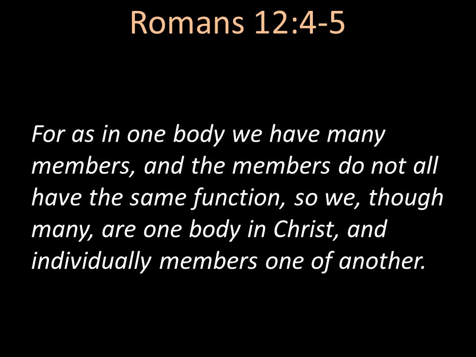 Romans 12:4-5 For as in one body we have many members, and the members do not all have the same function, so we, though many, are one body in Christ, and individually members one of another.