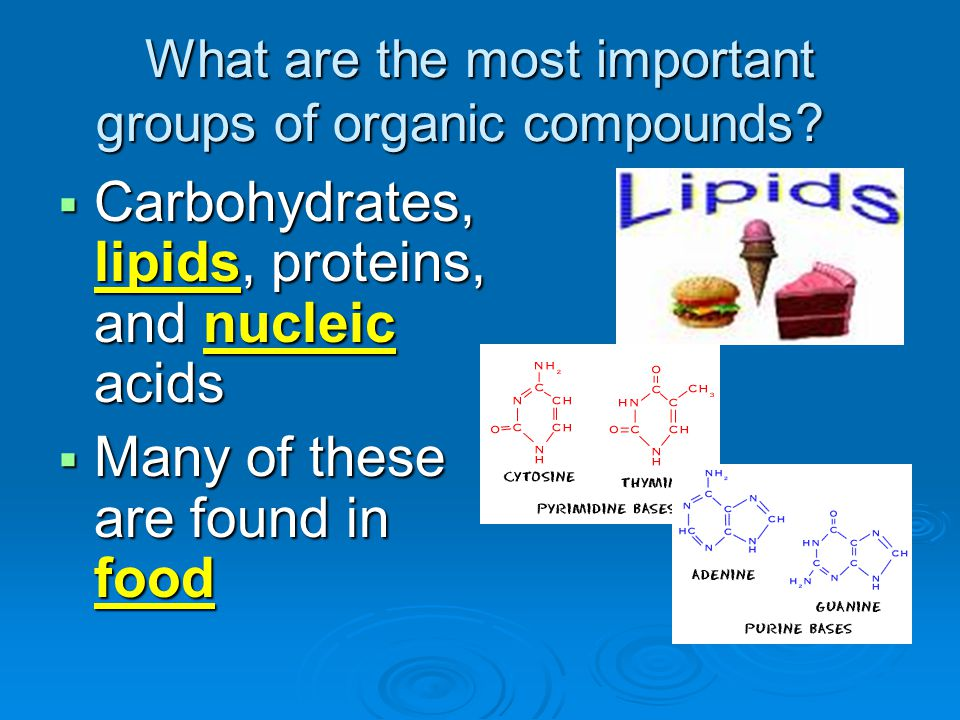 What are the most important groups of organic compounds?  Carbohydrates, lipids, proteins, and nucleic acids  Many of these are found in food