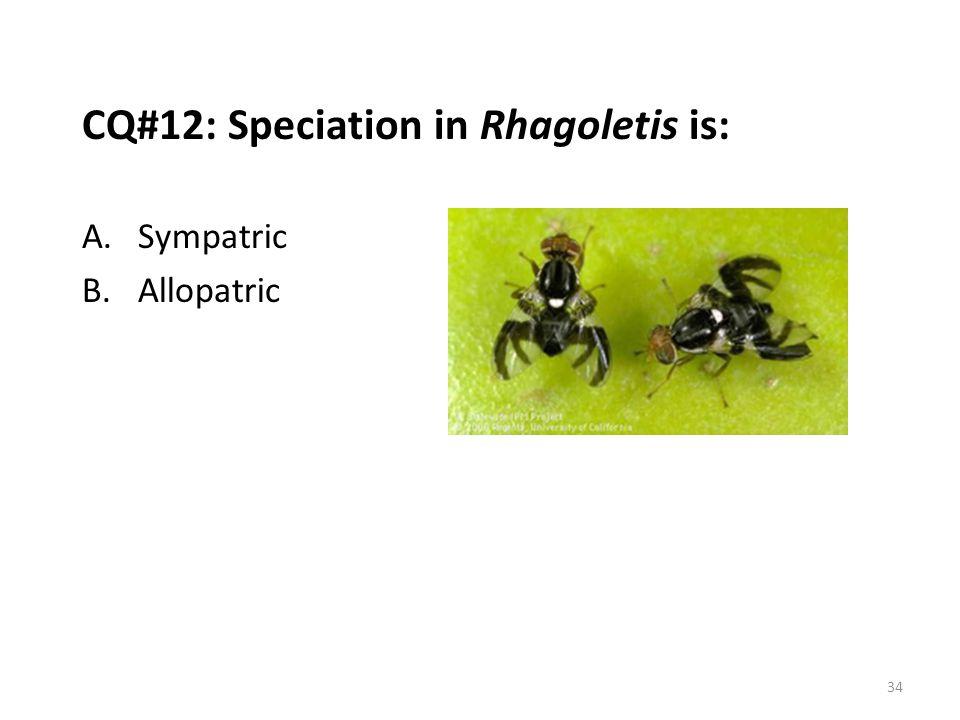 CQ#12: Speciation in Rhagoletis is: A.Sympatric B.Allopatric 34