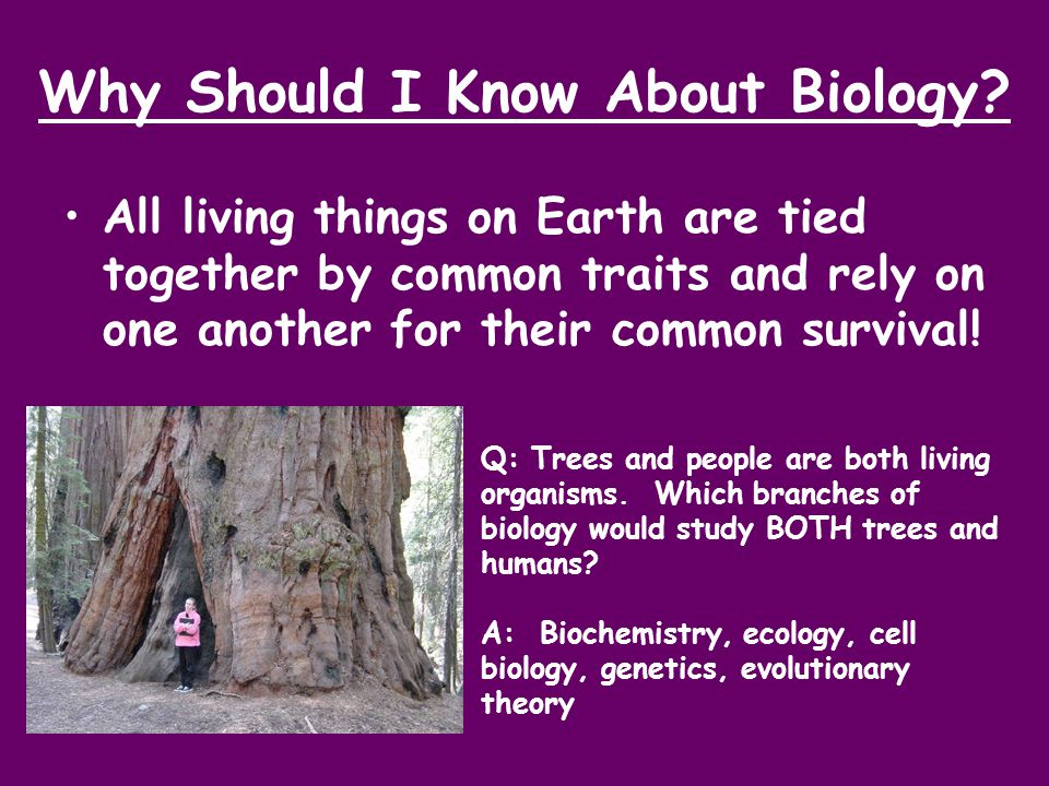 Why Should I Know About Biology? All living things on Earth are tied together by common traits and rely on one another for their common survival! Q: T