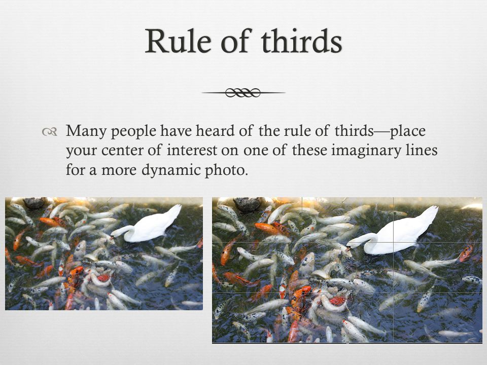 Rule of thirdsRule of thirds  Many people have heard of the rule of thirds—place your center of interest on one of these imaginary lines for a more dynamic photo.