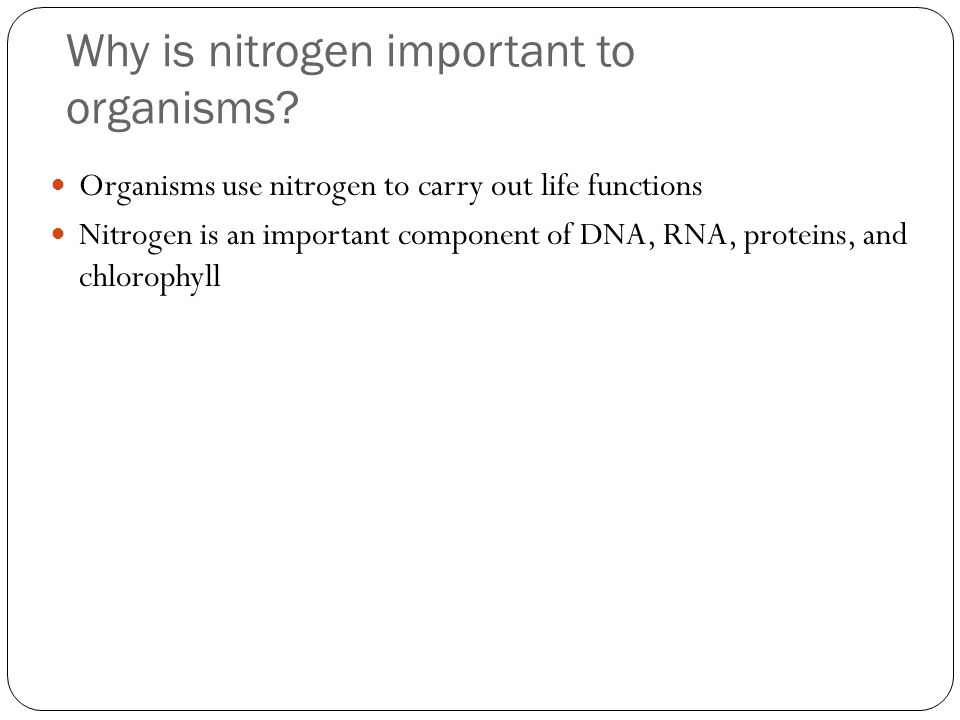 Nitrogen Fixation Convert atmospheric nitrogen to minerals that can be used to synthesize nitrogenous organic compounds Some cyanobacteria fix nitrogen in aquatic ecosystems Organisms that fix nitrogen are fulfilling their own metabolic requirements, but the excess ammonia they release becomes available to other organisms