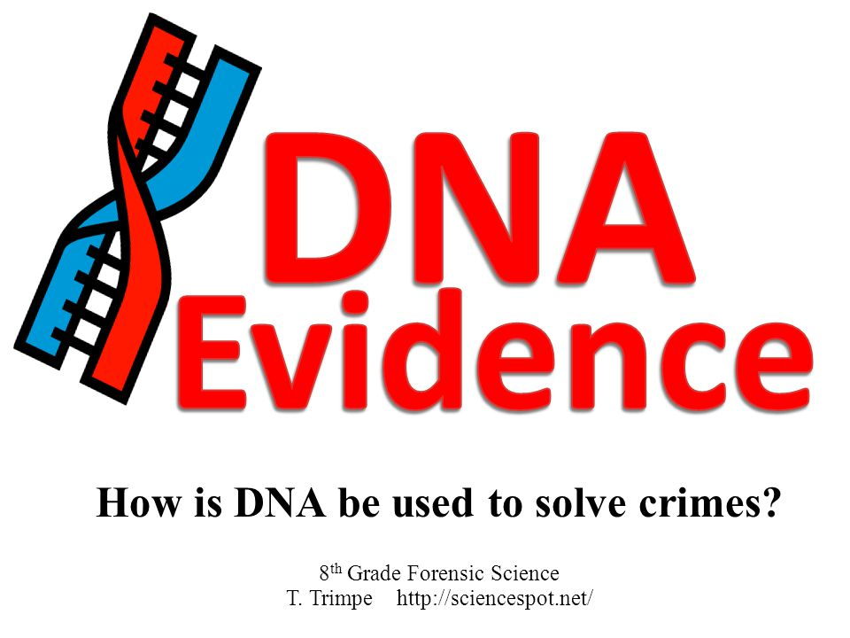 How is DNA be used to solve crimes? 8 th Grade Forensic Science T. Trimpe http://sciencespot.net/