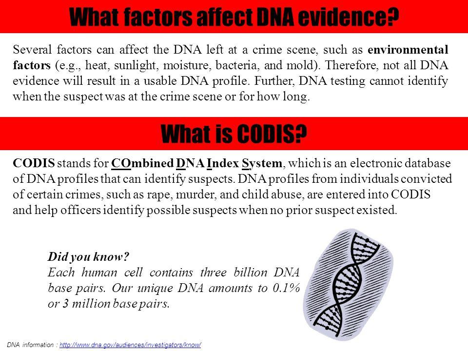 Information & image from http://www.teachersdomain.org/resource/tdc02.sci.life.gen.lp_dnamysteries/ B.
