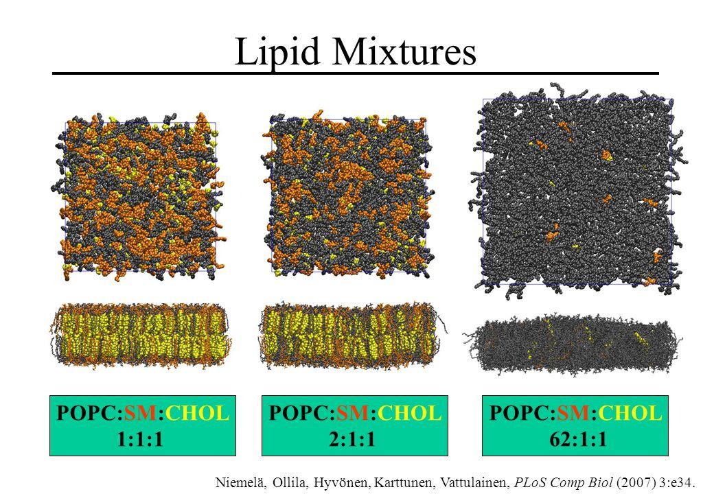 Lipid Mixtures POPC:SM:CHOL 1:1:1 POPC:SM:CHOL 2:1:1 POPC:SM:CHOL 62:1:1 Niemelä, Ollila, Hyvönen, Karttunen, Vattulainen, PLoS Comp Biol (2007) 3:e34.