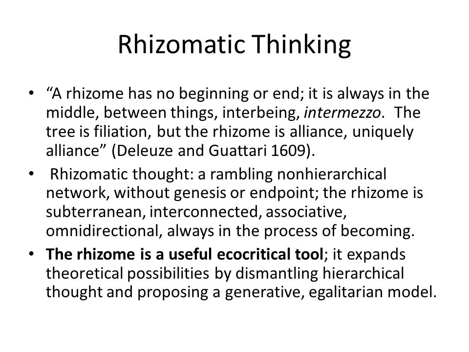 """Rhizomatic Thinking """"A rhizome has no beginning or end; it is always in the middle, between things, interbeing, intermezzo. The tree is filiation, but"""