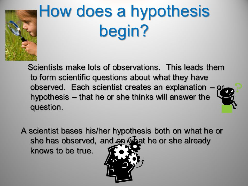 In science a prediction is an educated guess about the expected outcome of a specific test.