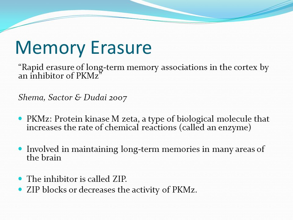 Memory Erasure Rapid erasure of long-term memory associations in the cortex by an inhibitor of PKMz Shema, Sactor & Dudai 2007 PKMz: Protein kinase M zeta, a type of biological molecule that increases the rate of chemical reactions (called an enzyme) Involved in maintaining long-term memories in many areas of the brain The inhibitor is called ZIP.