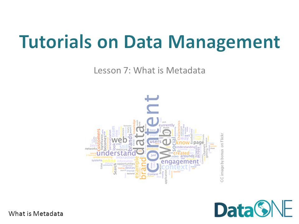 What is Metadata Lesson 7: What is Metadata CC image by bonus on Flickr