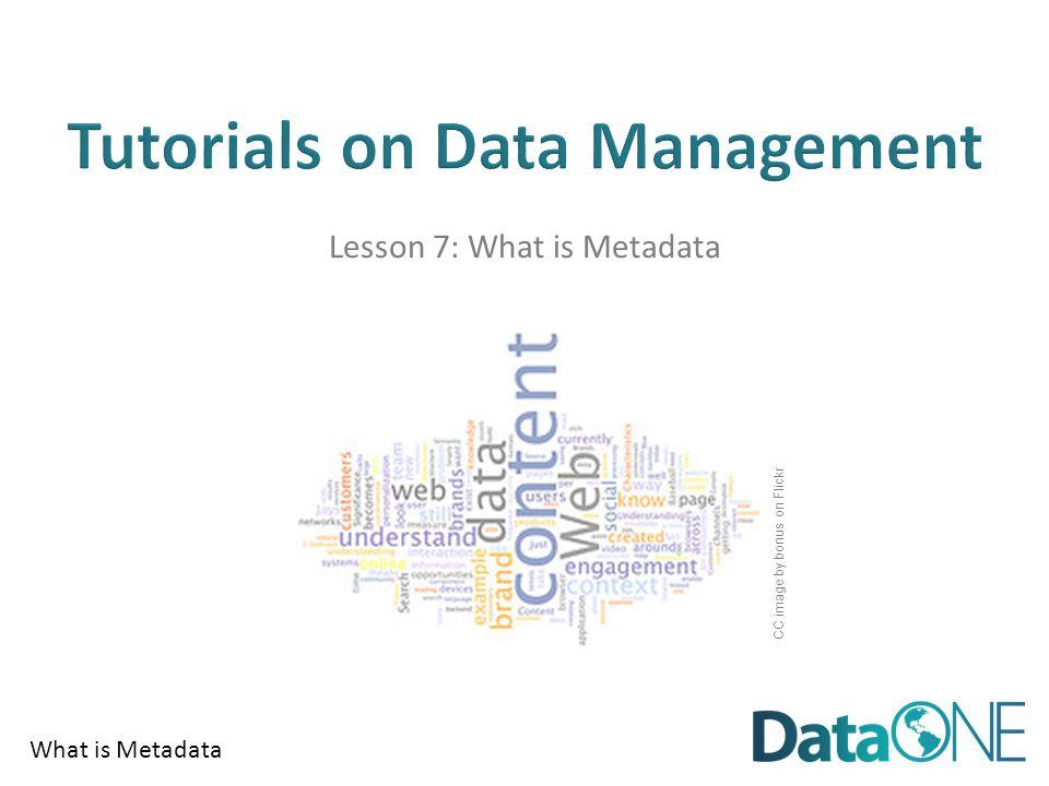 What is Metadata Metadata is all around… Author(s) Boullosa, Carmen.