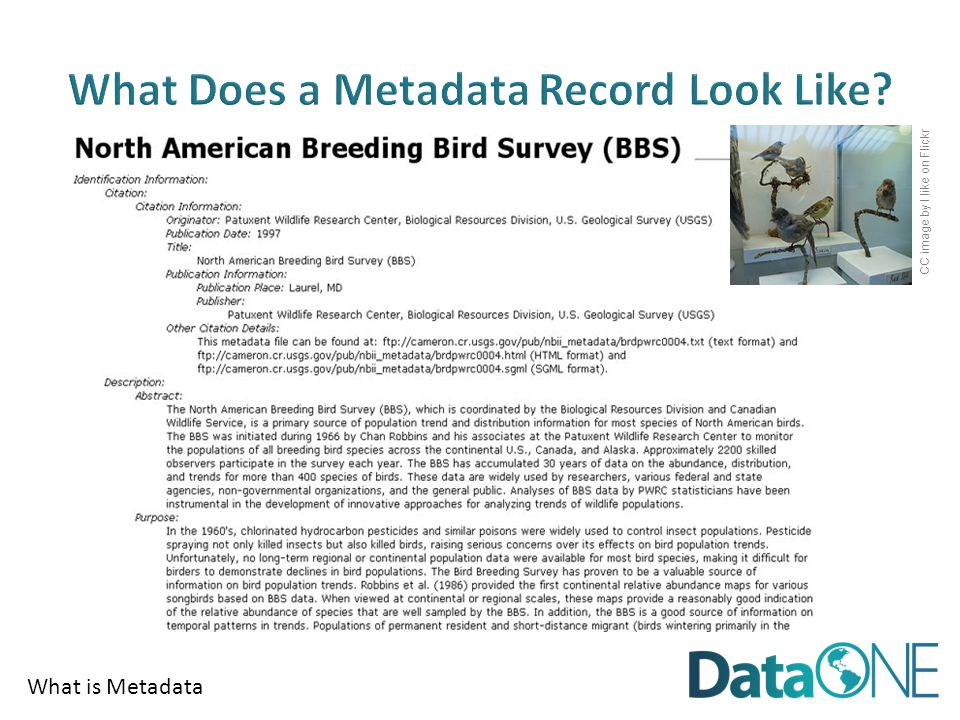 What is Metadata CC image by I like on Flickr