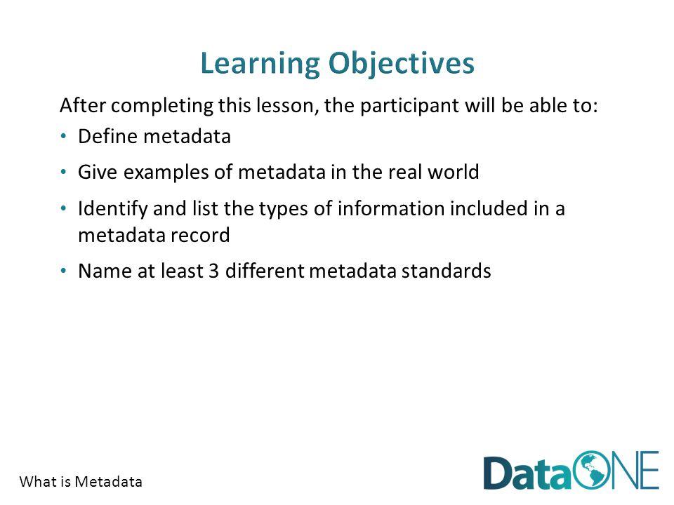 What is Metadata Plan Collect AssureDescribePreserveDiscoverIntegrateAnalyze
