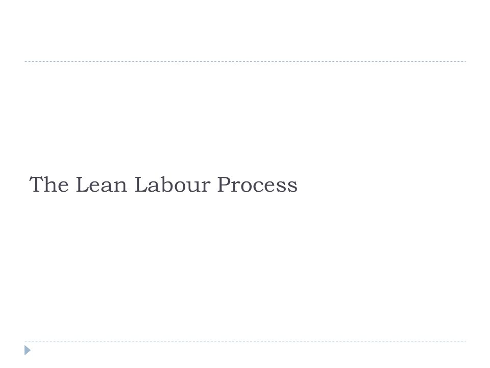 The Lean Labour Process