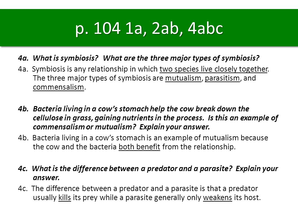 p.104 1a, 2ab, 4abc 4a. What is symbiosis. What are the three major types of symbiosis.