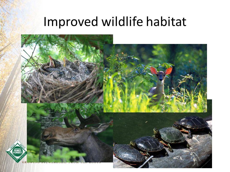 Improved wildlife habitat
