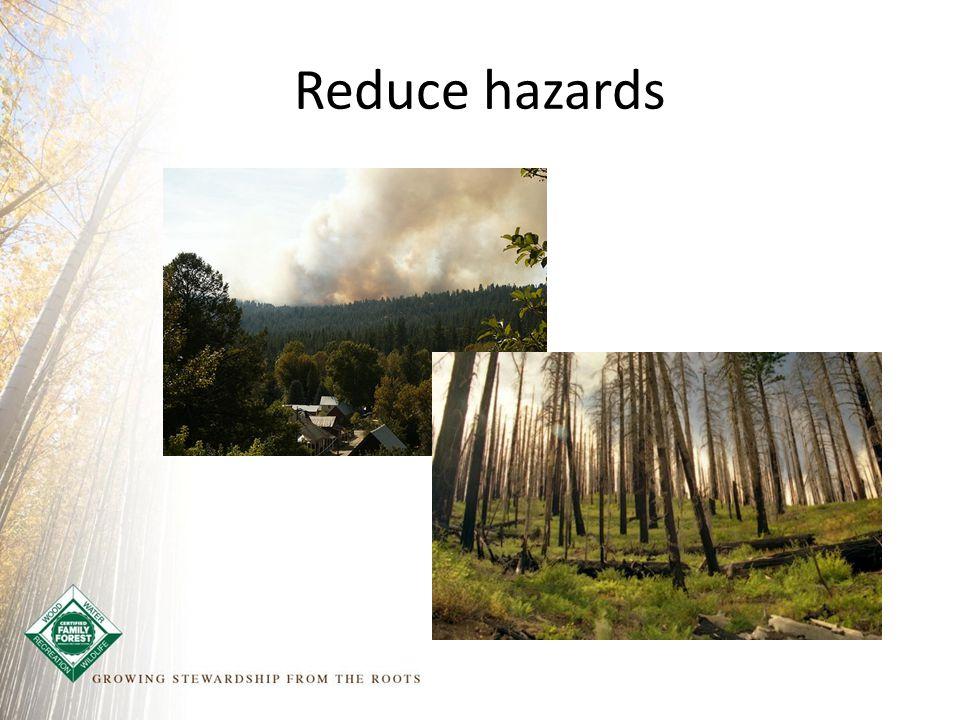 Reduce hazards