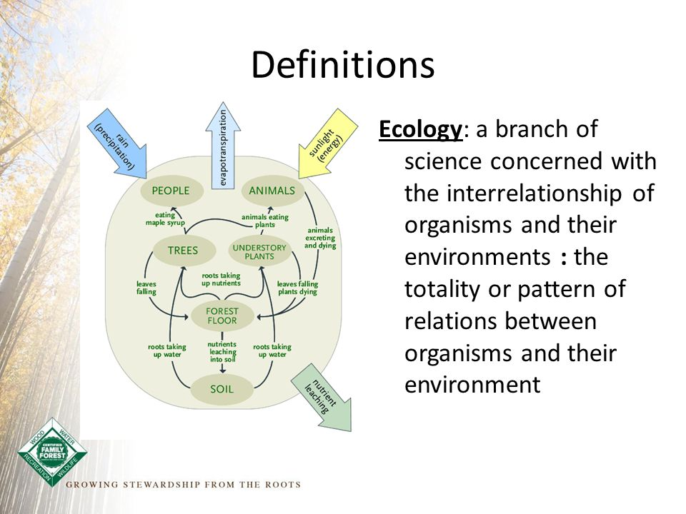 Definitions Ecology: a branch of science concerned with the interrelationship of organisms and their environments : the totality or pattern of relations between organisms and their environment
