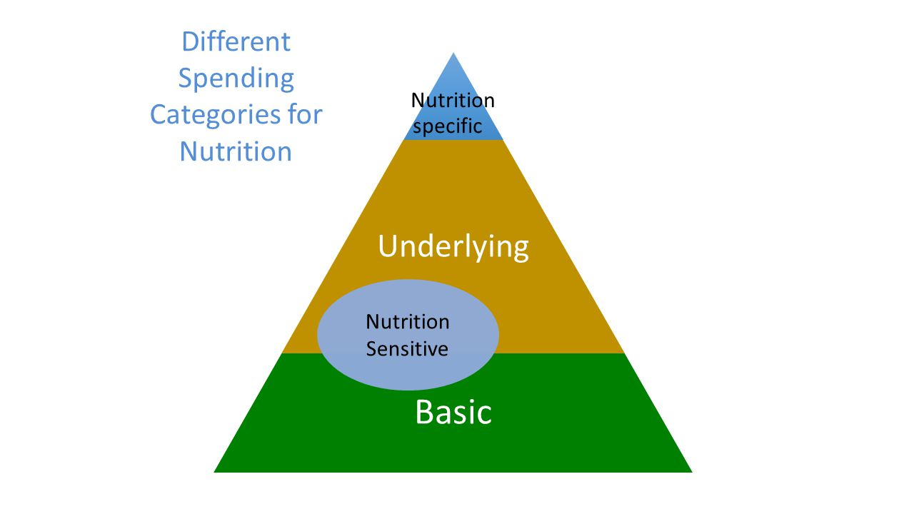 Nutrition specific Underlying Basic Nutrition Sensitive Different Spending Categories for Nutrition