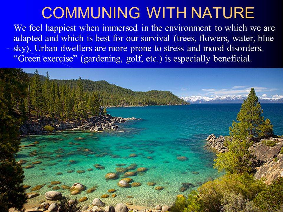 COMMUNING WITH NATURE We feel happiest when immersed in the environment to which we are adapted and which is best for our survival (trees, flowers, water, blue sky).