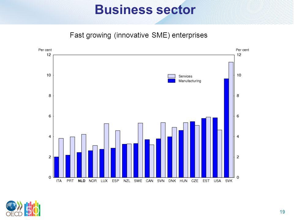 Business sector Fast growing (innovative SME) enterprises 19