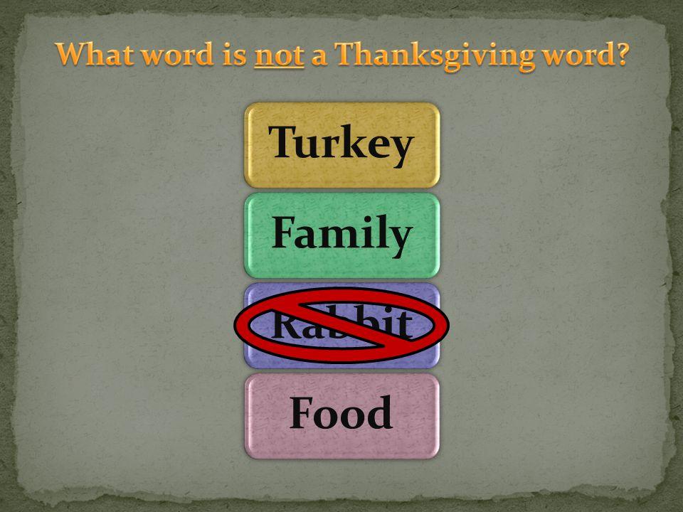 TurkeyFamilyRabbitFood