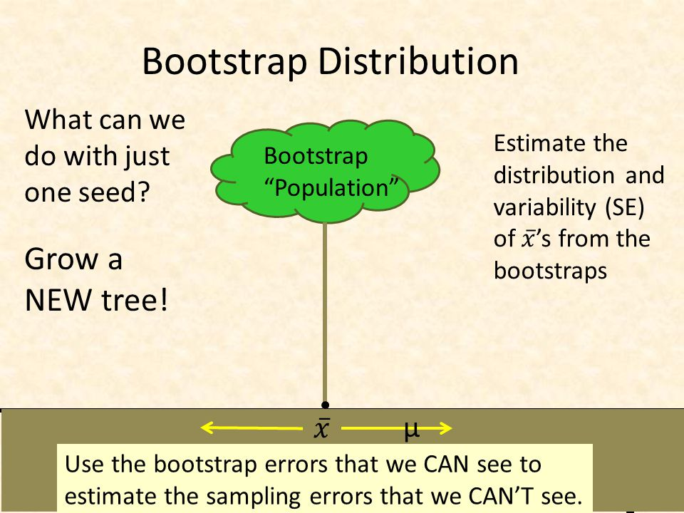Bootstrap Distribution Bootstrap Population What can we do with just one seed.