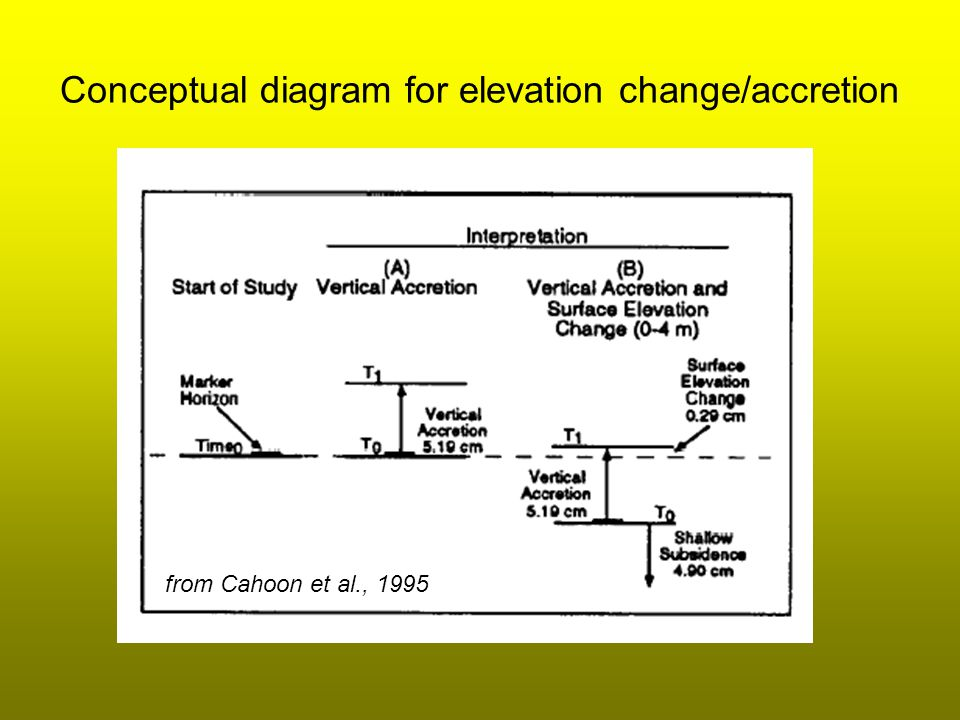 Conceptual diagram for elevation change/accretion from Cahoon et al., 1995