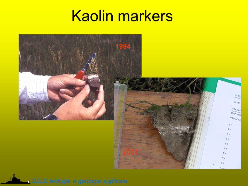 Kaolin markers 1994 2004 SELC biologia e geologia applicate