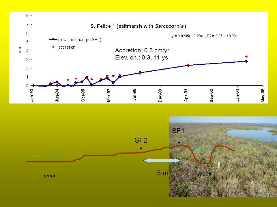 Accretion: 0.3 cm/yr Elev. ch.: 0.3, 11 ys. SF1 SF2 creek pond 5 m