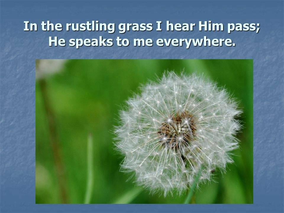 In the rustling grass I hear Him pass; He speaks to me everywhere.