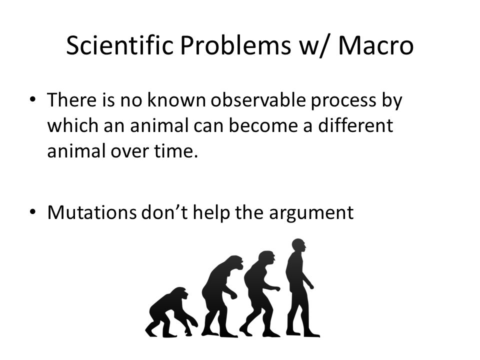 Scientific Problems w/ Macro There is no known observable process by which an animal can become a different animal over time. Mutations don't help the