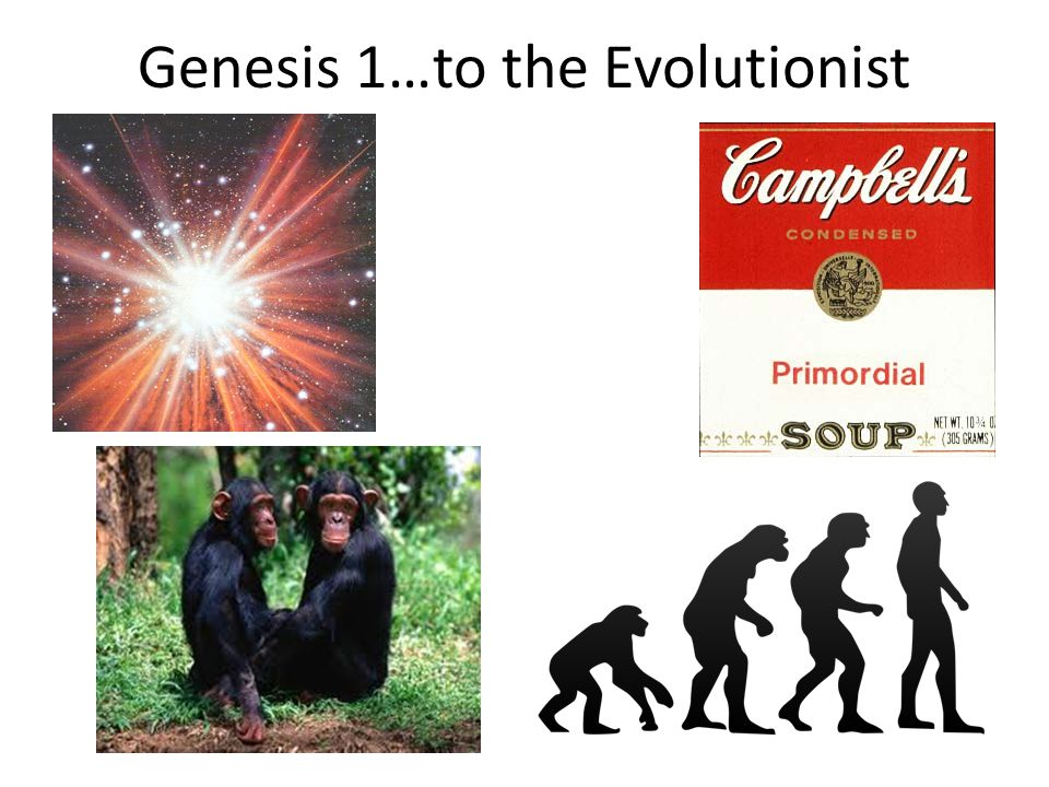Genesis 1…to the Evolutionist