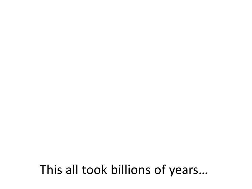 This all took billions of years…