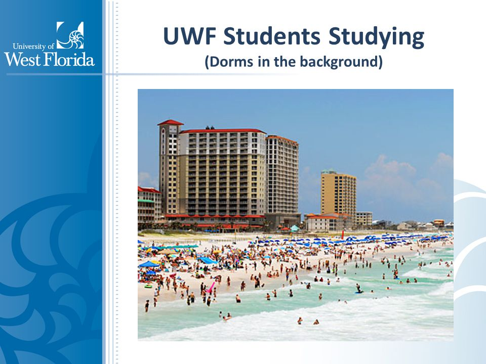 UWF Students Studying (Dorms in the background)