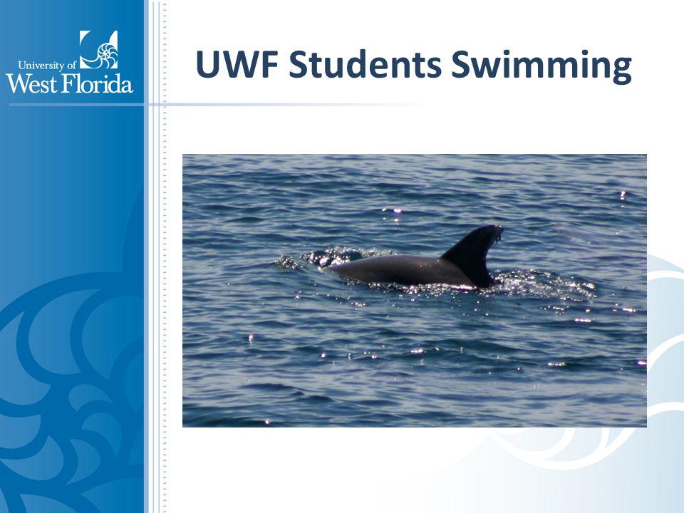 UWF Students Swimming