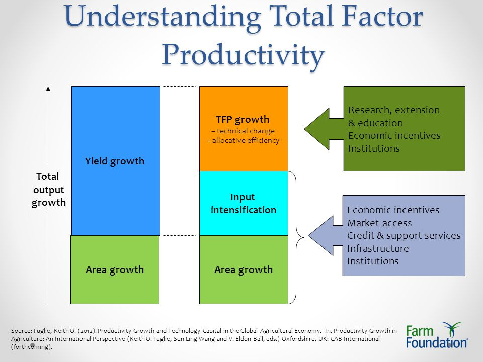 Understanding Total Factor Productivity Yield growth Area growth Input intensification TFP growth – technical change – allocative efficiency Total output growth Area growth Research, extension & education Economic incentives Institutions Economic incentives Market access Credit & support services Infrastructure Institutions Source: Fuglie, Keith O.