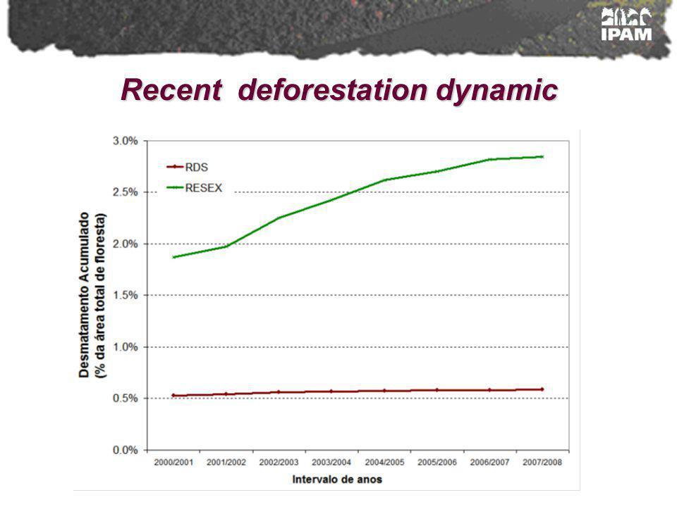 Recent deforestation dynamic