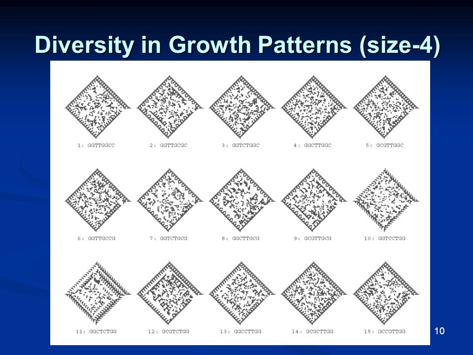 10 Diversity in Growth Patterns (size-4)