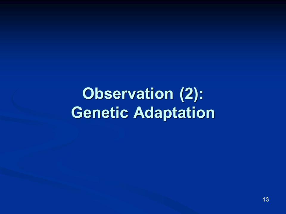 13 Observation (2): Genetic Adaptation