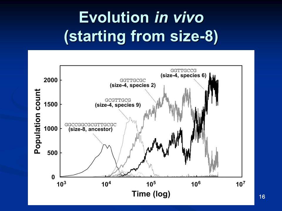 16 Evolution in vivo (starting from size-8)