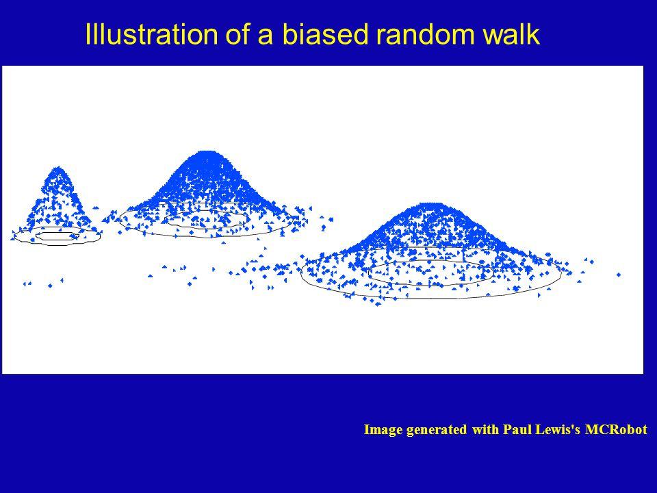 Figure generated using MCRobot program (Paul Lewis, 2001) Illustration of a biased random walk Image generated with Paul Lewis s MCRobot